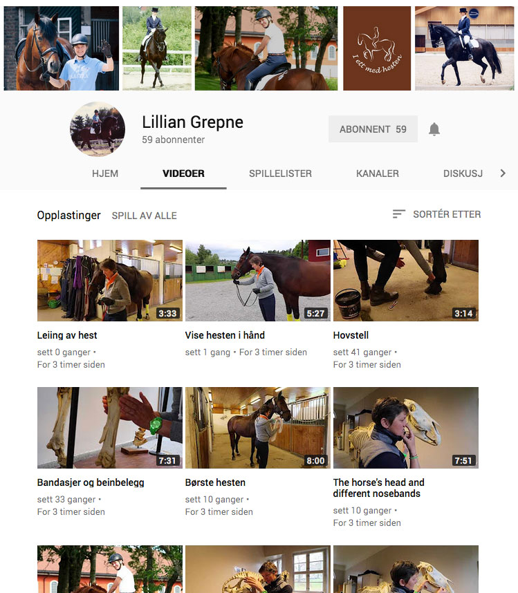 Lillian Grepne youtube kanal